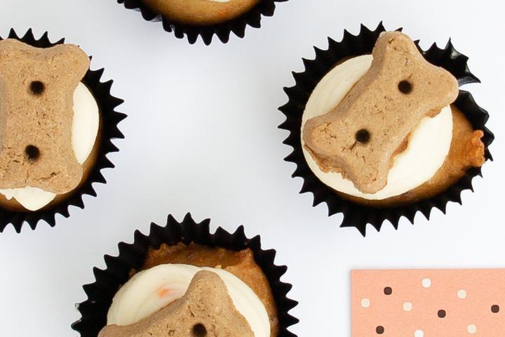 Cupcake for dog