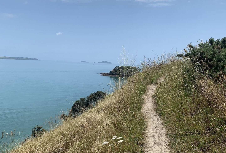 waiheke island short walk