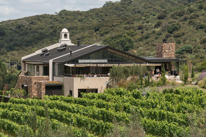 tantalus estate winery