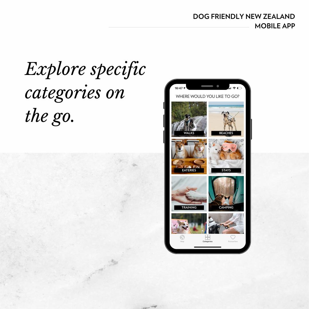 dog friendly new zealand app