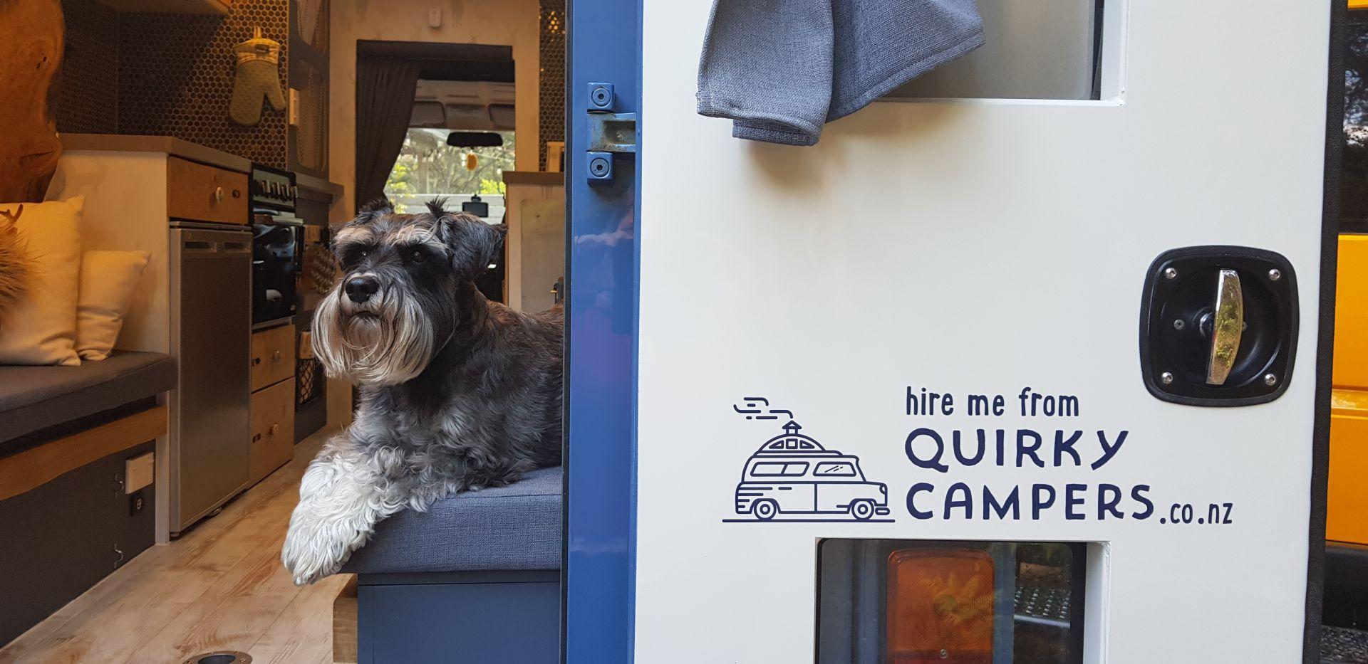 dog friendly campervan hire new zealand