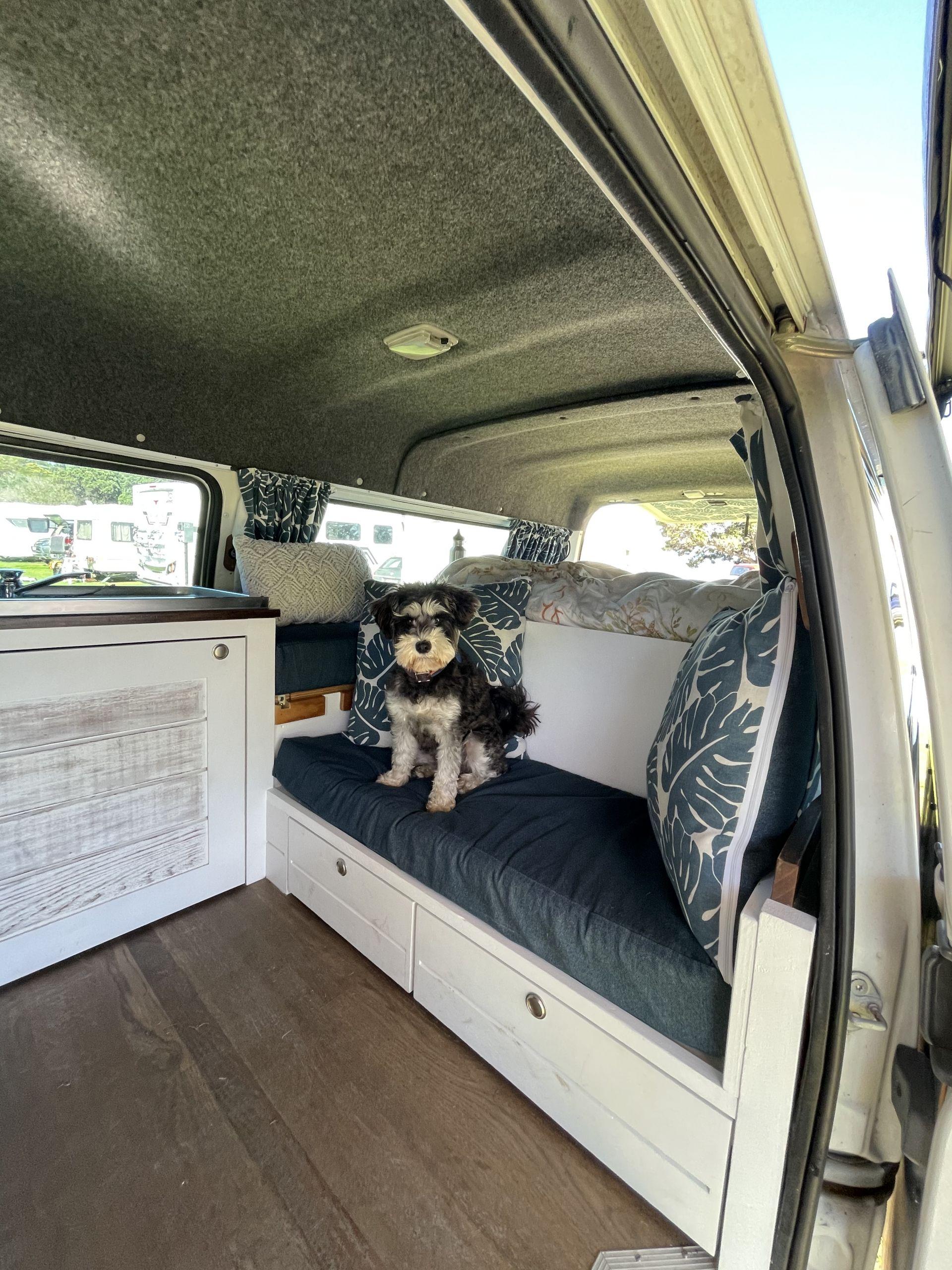 dog friendly holidays new zealand